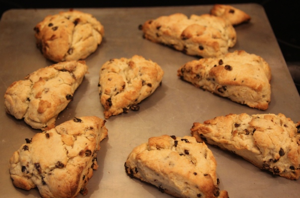 Cream scones with currants