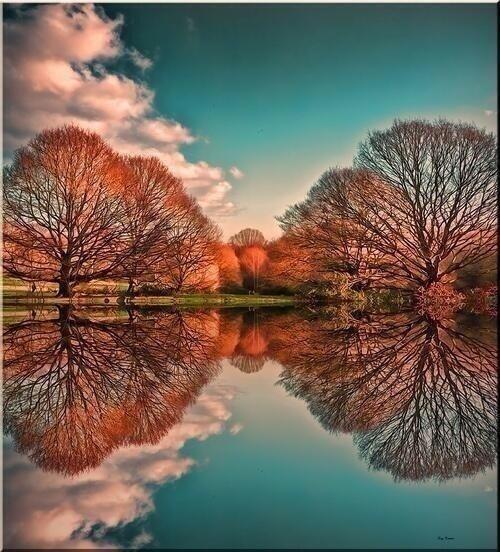 Perfect Reflection London