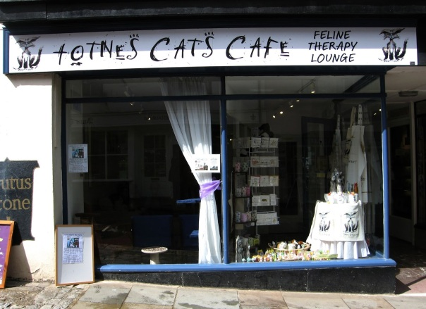 Totnes Cats Cafe
